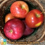 Fall Experiments with Apples – They're Not Just for Eating!