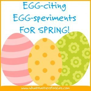 WMFK_eggciting_eggsperiments